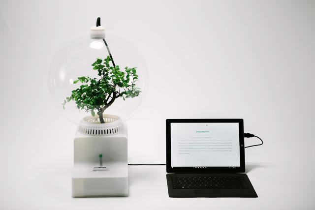 3060347-inline-s-1-microsoft-teaches-plants-to-talk-with-project-florence